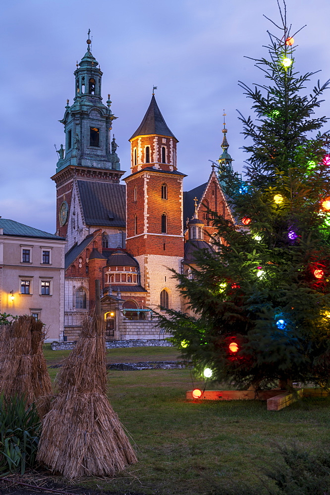 Wawel Castle with Christmas tree, UNESCO World Heritage Site, Krakow, Poland, Europe