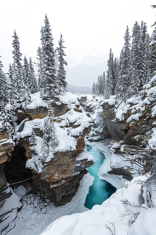 Partly frozen Athabasca Falls in mid-winter, Banff National Park, UNESCO World Heritage Site, Alberta, Canada, North America