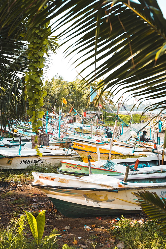 The fishing boats at Galle, Sri Lanka, Asia