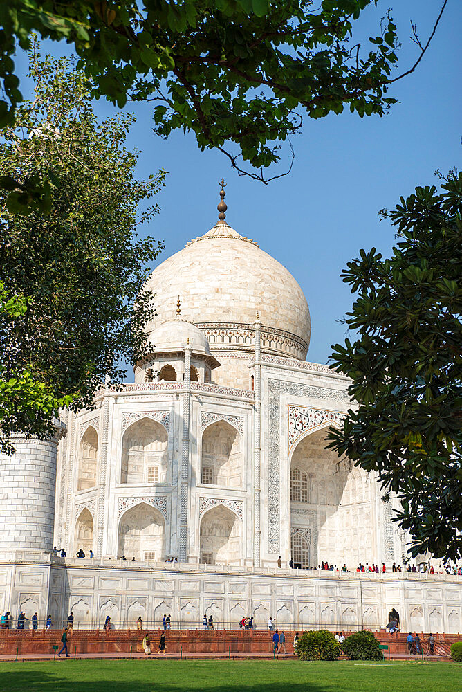 Taj Mahal, UNESCO World Heritage Site, Agra, Uttar Pradesh, India, Asia - 1341-48