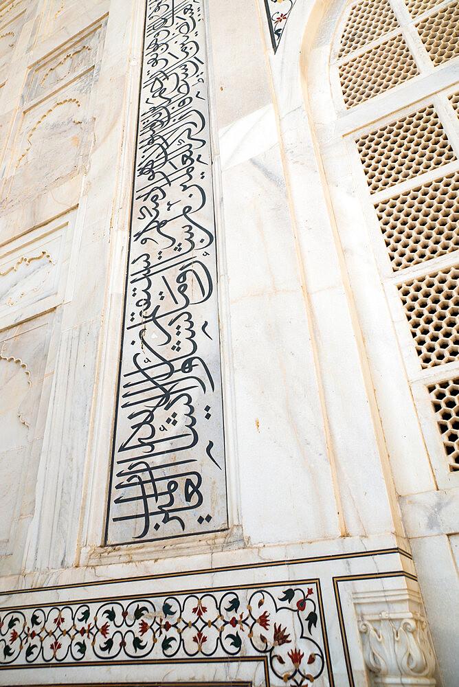 Taj Mahal, UNESCO World Heritage Site, Agra, Uttar Pradesh, India, Asia - 1341-57
