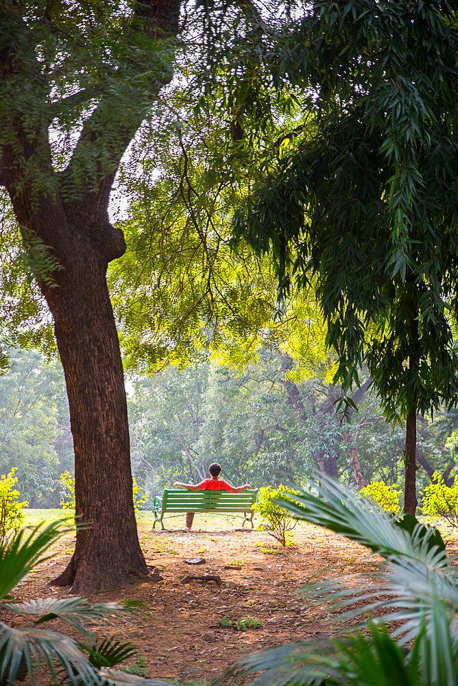 Lodhi Garden, New Delhi, India, Asia - 1341-84