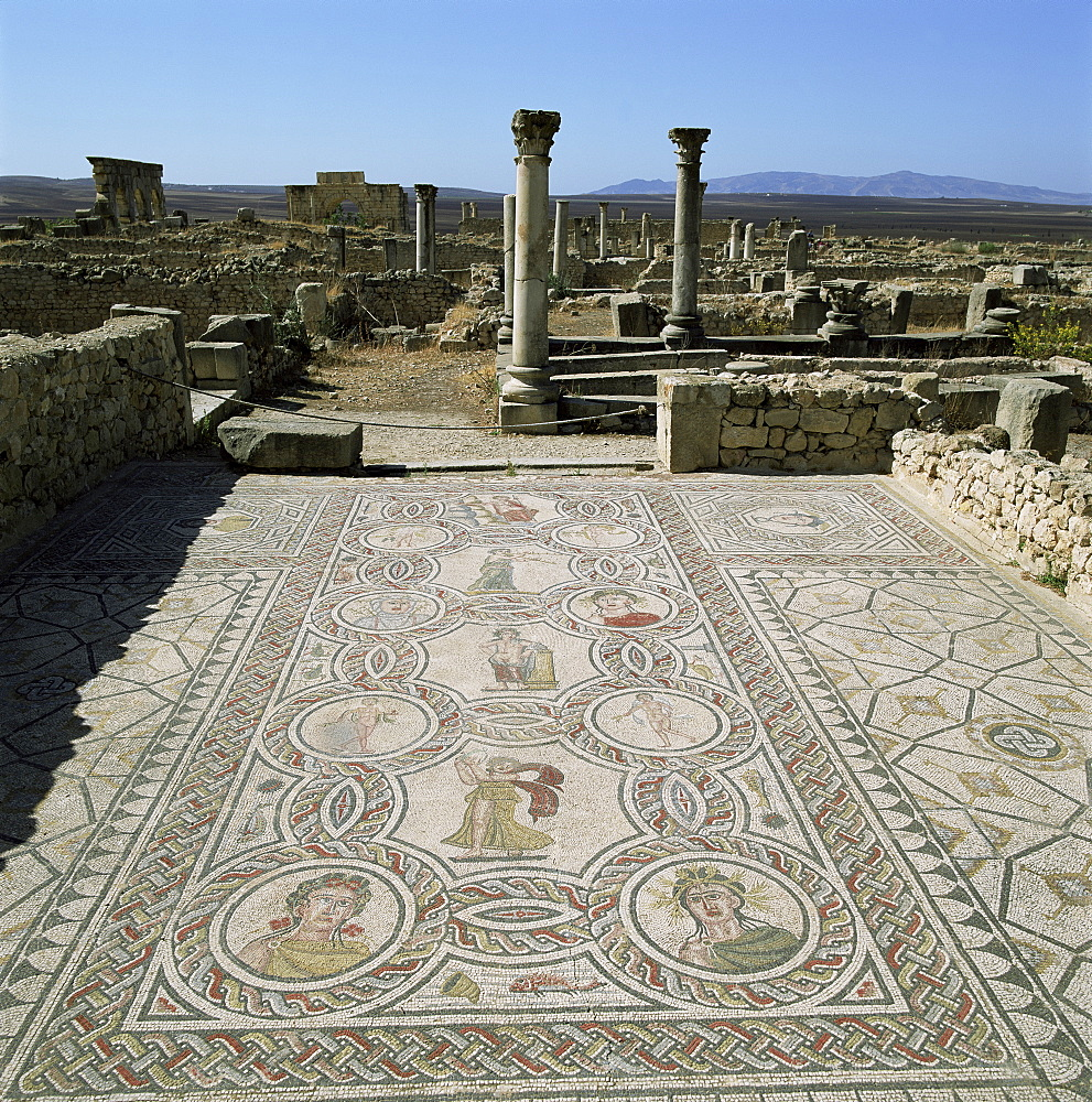 Mosaics from the 3rd century, Volubilis, UNESCO World Heritage Site, Morocco, North Africa, Africa