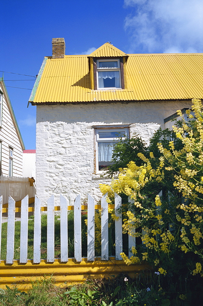 Typical house, with yellow corrugated roof and white stone walls and fence, in Stanley, capital of the Falkland Islands, South America