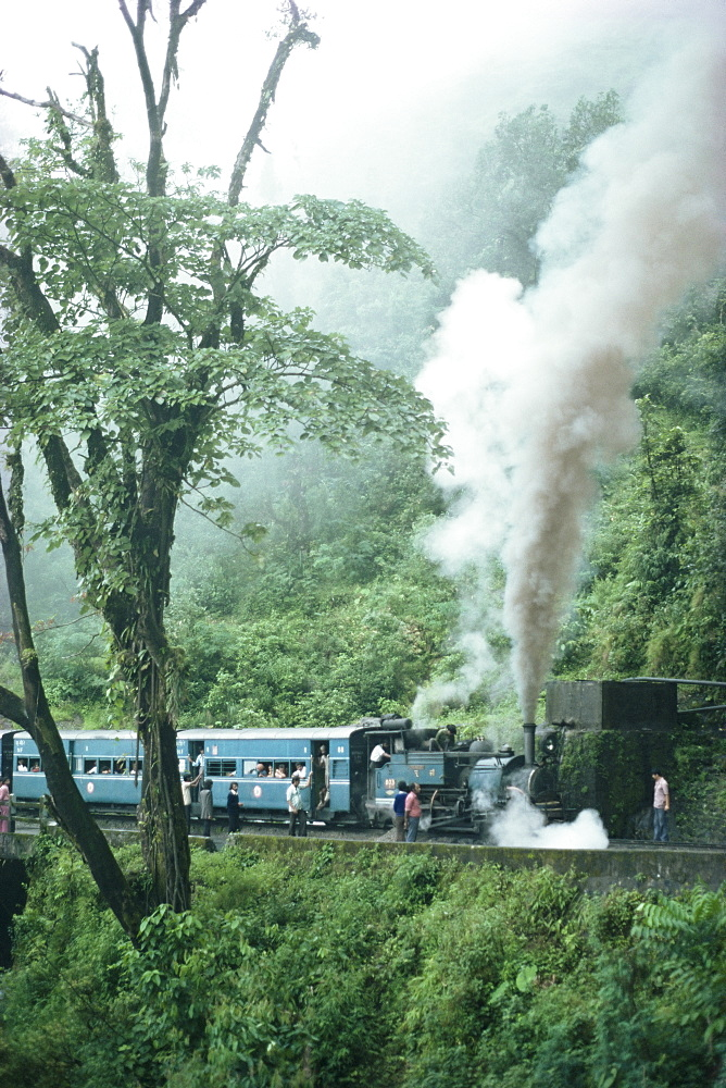 Steam train on the way to Darjeeling, West Bengal state, India, Asia - 2-12566