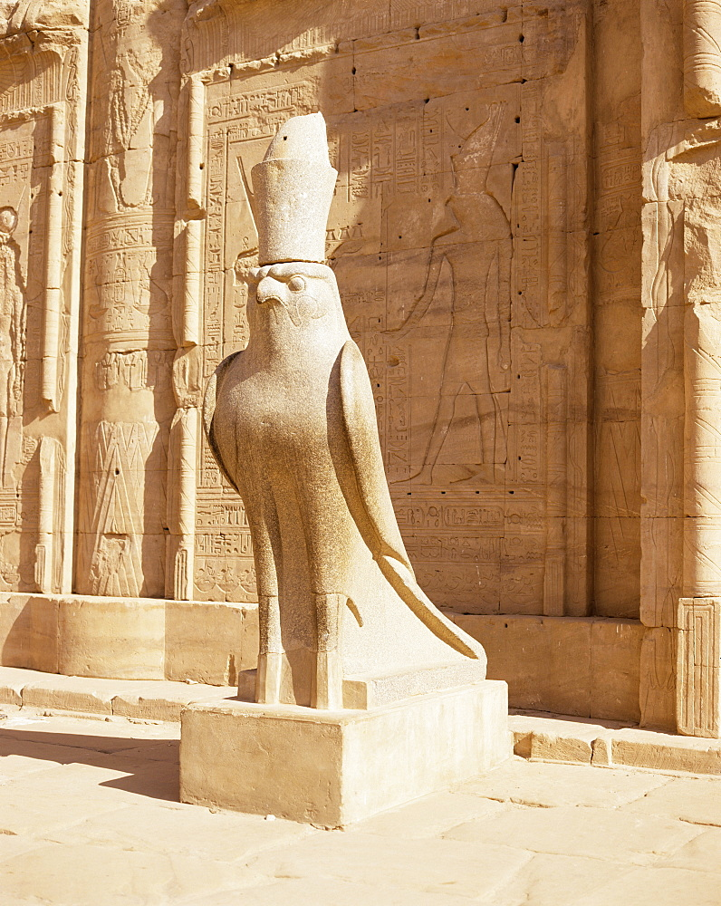 Statue of Horus, Temple of Horus, Edfu, Egypt, North Africa, Africa