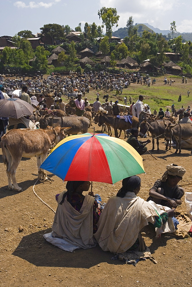 People walk for days to trade in this famous weekly market, Saturday market in Lalibela, Lalibela, Ethiopia, Africa