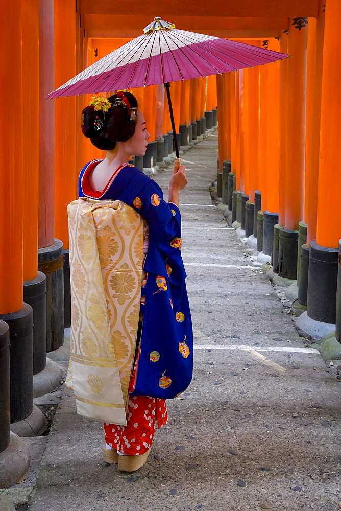 Portrait of a geisha holding an ornate umbrella at Fushimi-Inari Taisha shrine, which is lined with hundreds of red torii gates, Kyoto, Kansai region, Honshu, Japan, Asia