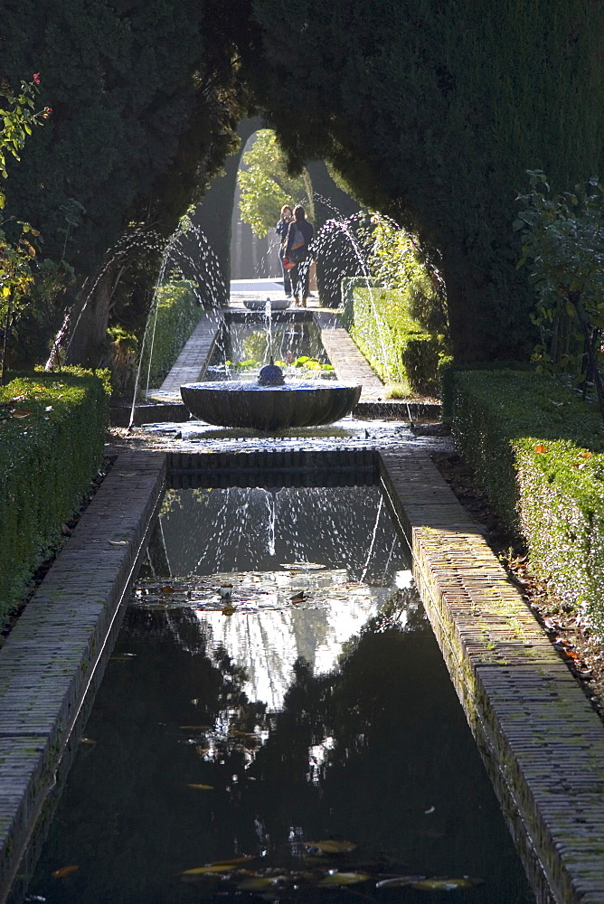 Water channel and fountain in the gardens of the Generalife, Alhambra, UNESCO World Heritage Site, Granada, Andalucia, Spain, Europe - 253-3639