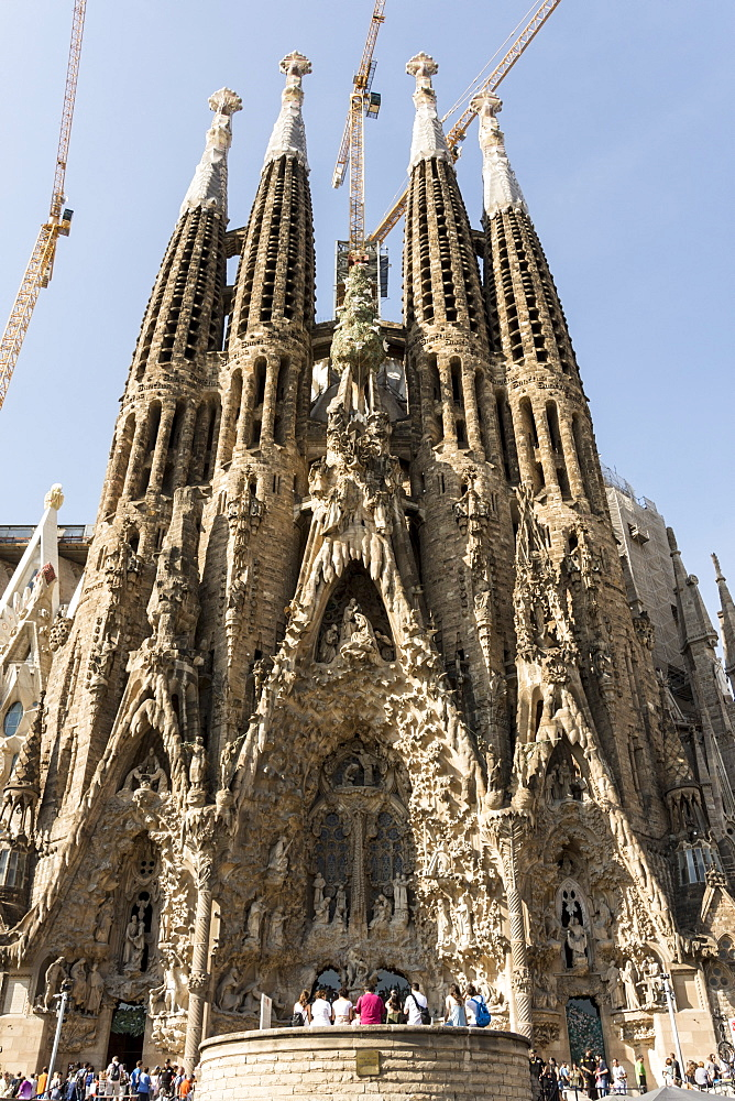 Gaudi's Cathedral of La Sagrada Familia, still under construction, UNESCO World Heritage Site, Barcelona, Catalonia, Spain, Europe - 29-5423