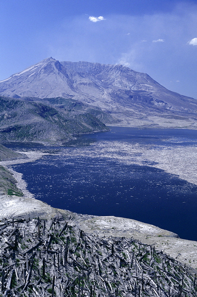 Blast area of 1980 eruption with destroyed forest, floating timber on Spirit Lake and new crater, Washington State., United States of America (U.S.A.), North America