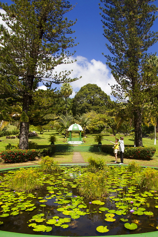 Botanical Gardens, Kingstown, St. Vincent, St. Vincent and the Grenadines, Windward Islands, West Indies, Caribbean, Central America