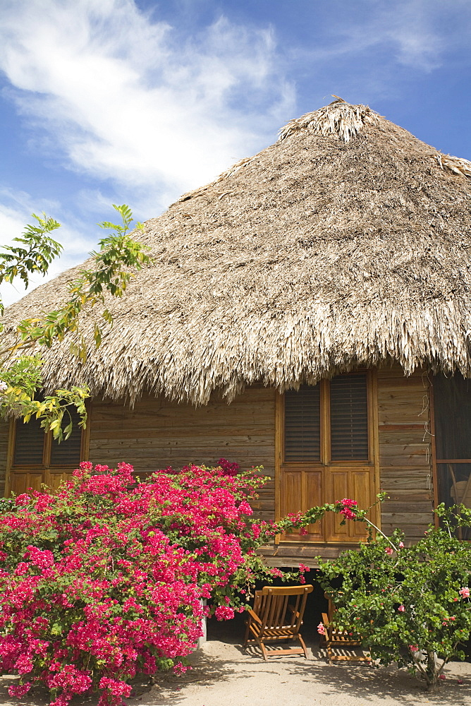 Thatched cottage at The Turtle Inn, Francis Ford-Cappola's beach front hotel, Placencia, Belize, Central America