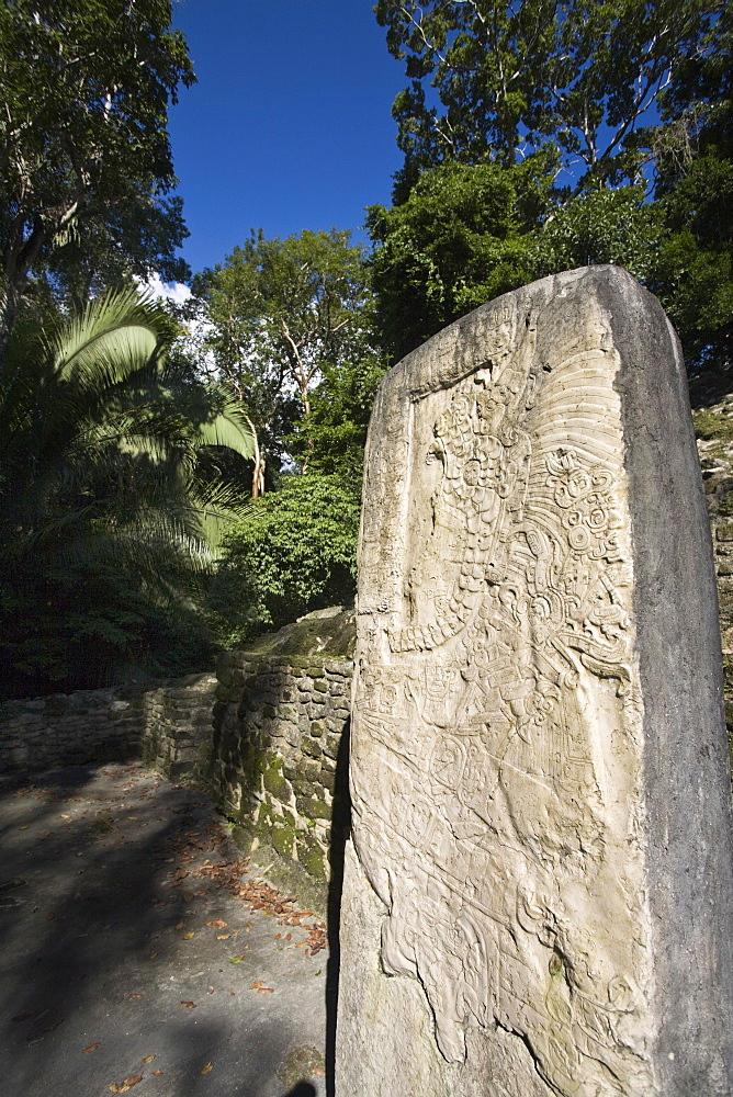 Stela 9 erected in AD 625 to commemorate the accession of Lord Smoking Shell in 608, shown in ceremonial regalia, Lamanai, Belize, Central America