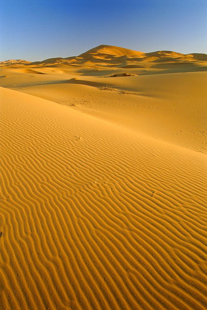 Dunes of the Erg Chebbi, Sahara Desert near Merzouga, Morocco, North Africa