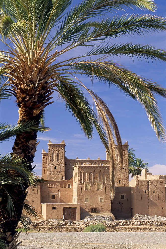 Kasbah Amridi, framed by palm fronds, Dades Valley near Skoura, Morocco, North Africa, Africa