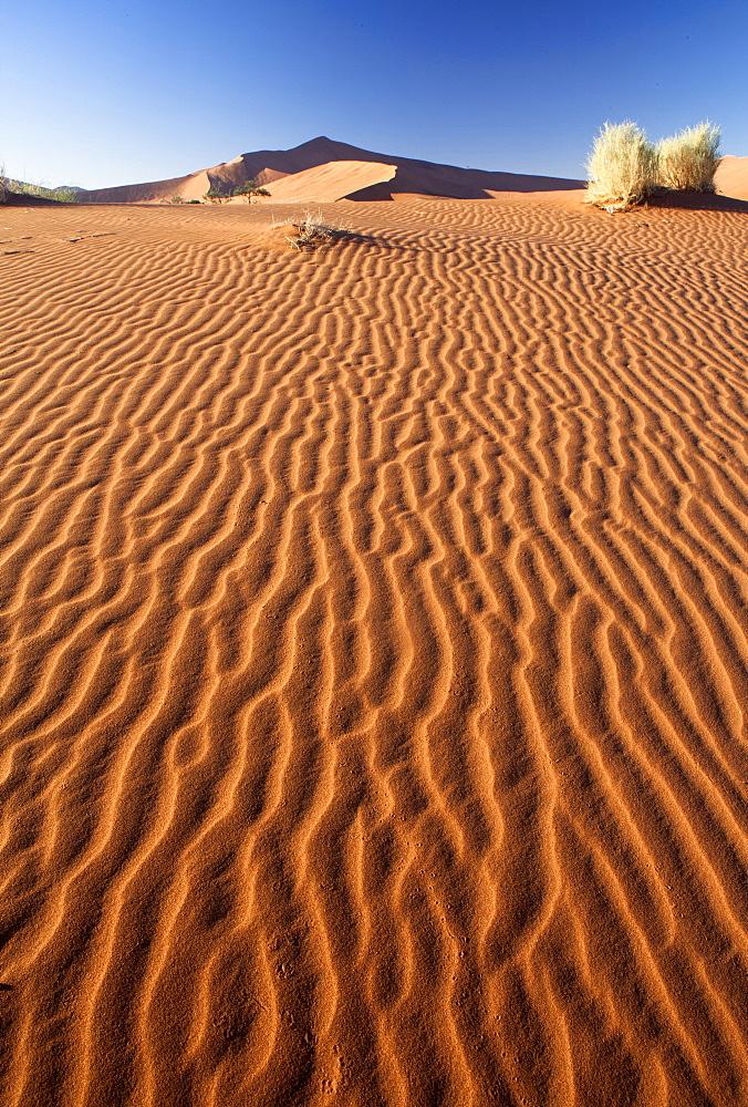 Sand Ripples on one of the ancient orange dunes of the Namib Desert at Sossusvlei, near Sesriem, Namib Naukluft Park, Namibia, Africa