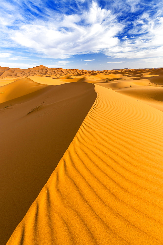 Wide angle view of the ripples and dunes of the Erg Chebbi Sand sea, part of the Sahara Desert near Merzouga, Morocco, North Africa, Africa - 321-5882