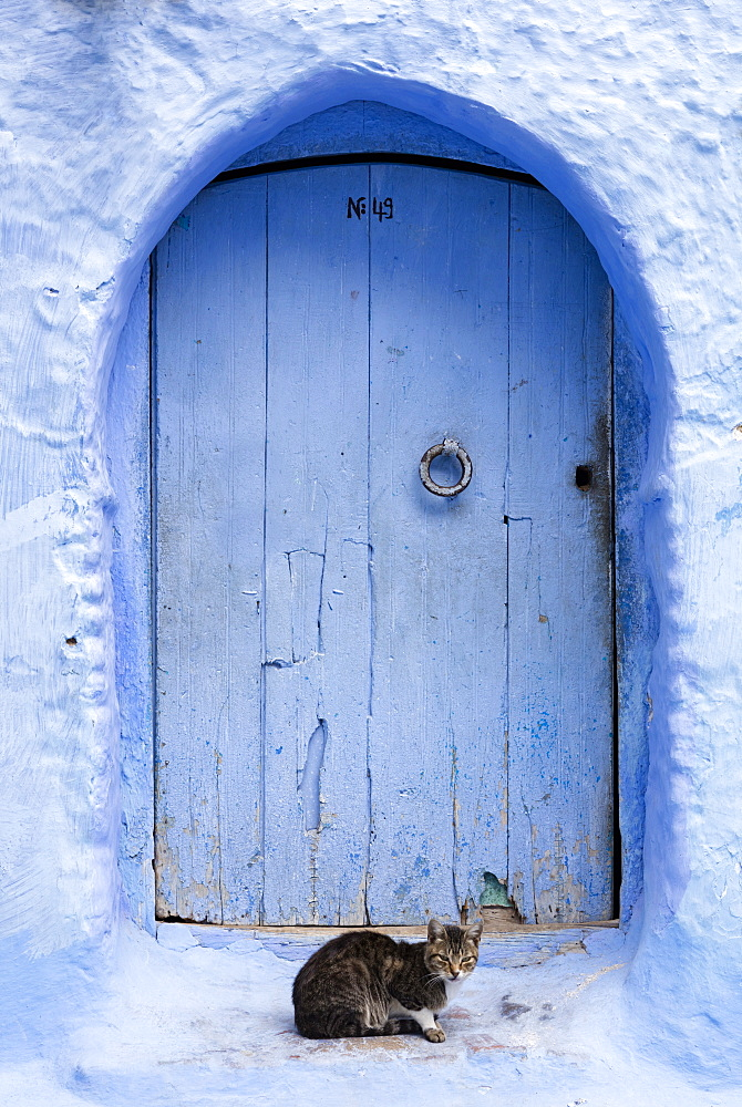 Blue door and wall in the old town of Chefchaouen (Chaouen) (The Blue City), Morocco, North Africa, Africa - 321-5916