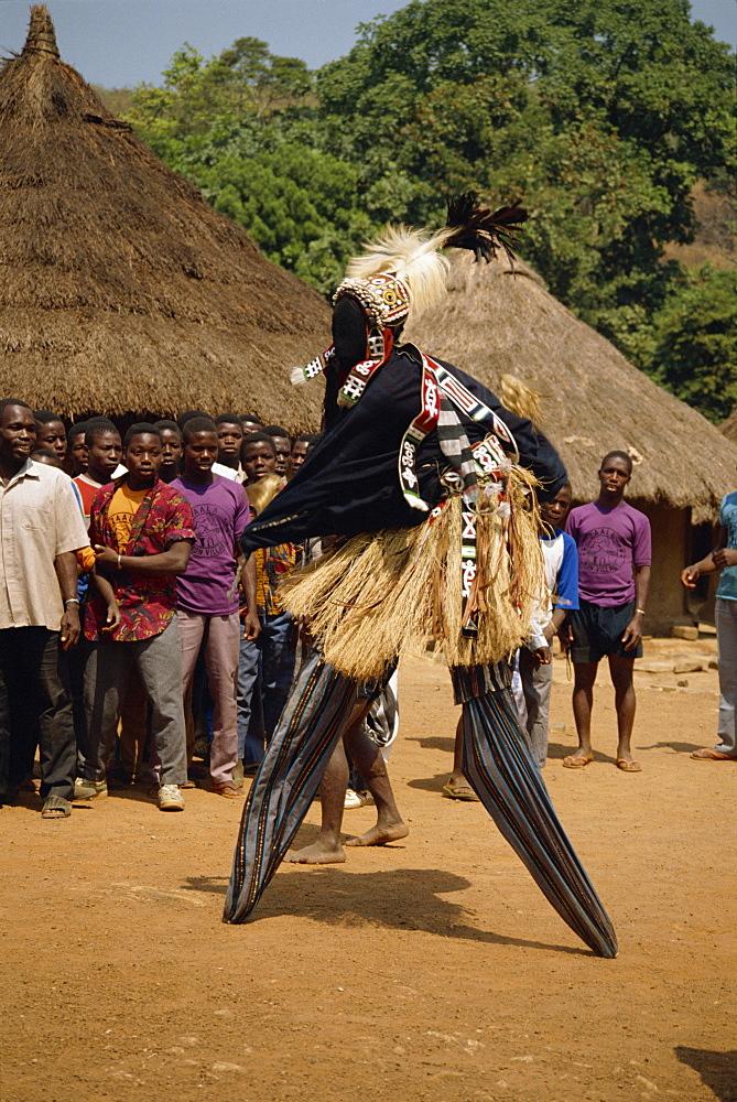 Stilt dancer watched by villagers, Ivory Coast, West Africa, Africa