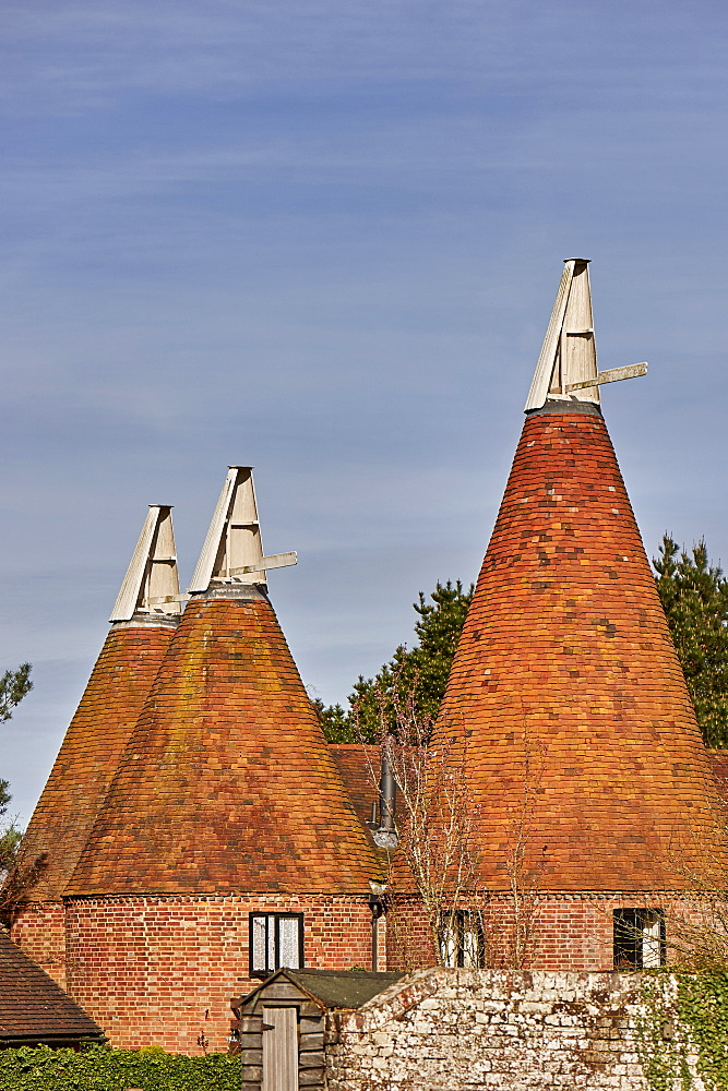 Oast houses, originally used to dry hops in beer-making, converted into farmhouse accommodation at Tudeley, Kent, England, United Kingdom, Europe - 358-623