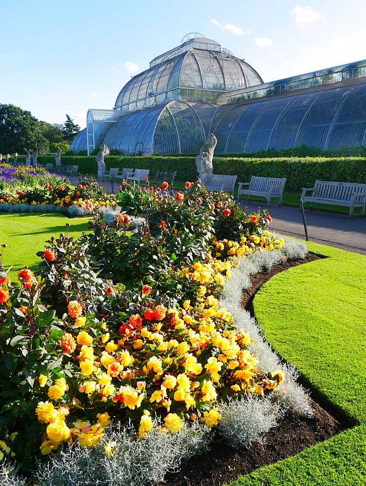 Palm House, Kew Gardens, UNESCO World Heritage Site, Kew, Greater London, England, United Kingdom, Europe - 367-6132