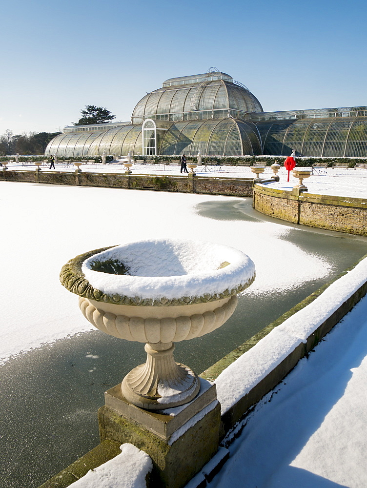 Palm House in winter, Kew Gardens, UNESCO World Heritage Site, London, England, United Kingdom, Europe - 367-6182