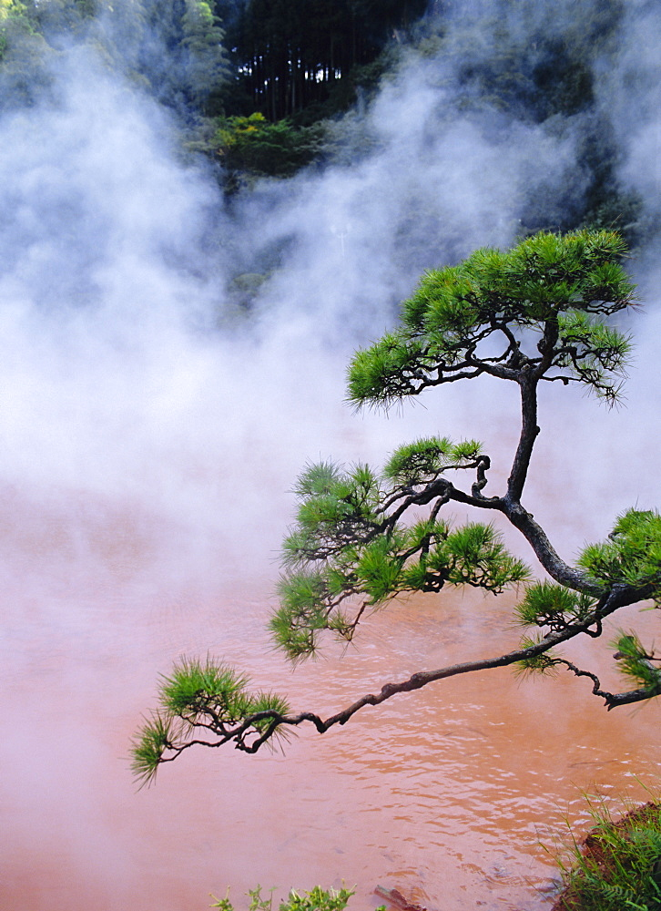 Blood Pond Hell (Chinoike Jigoku), natural hot springs (onsen), Beppu, Kyushu, Japan *** Local Caption *** The blood red clay is used as an ointment to treat skin problems