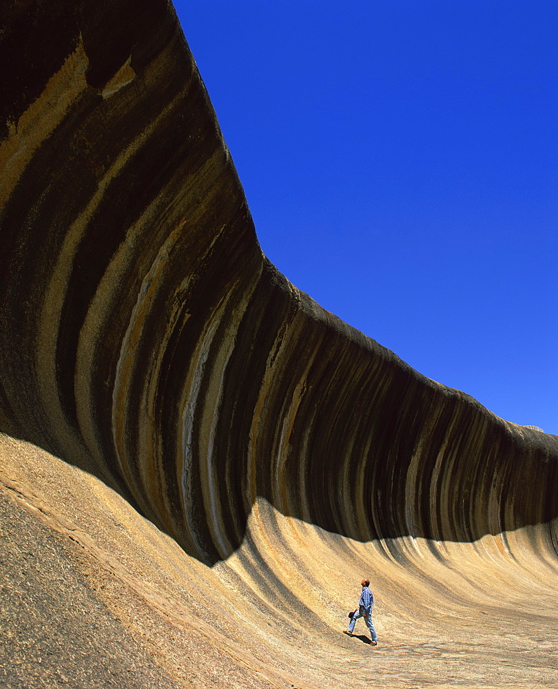 A man gazing up at Wave Rock, at Hyden, Western Australia, Australia, Pacific - 383-1001