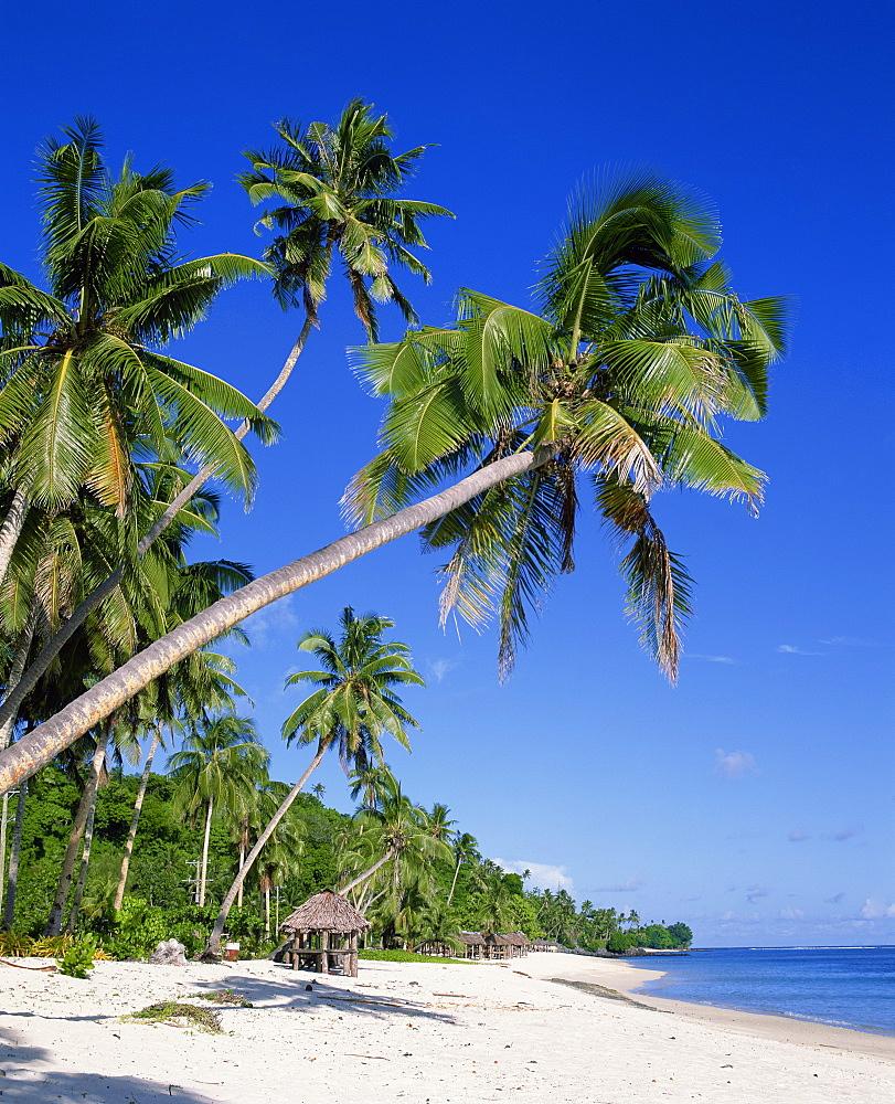 Palm trees and tropical beach at Lalamanu, near Vavau, Western Samoa, Pacific Islands, Pacific - 383-1208
