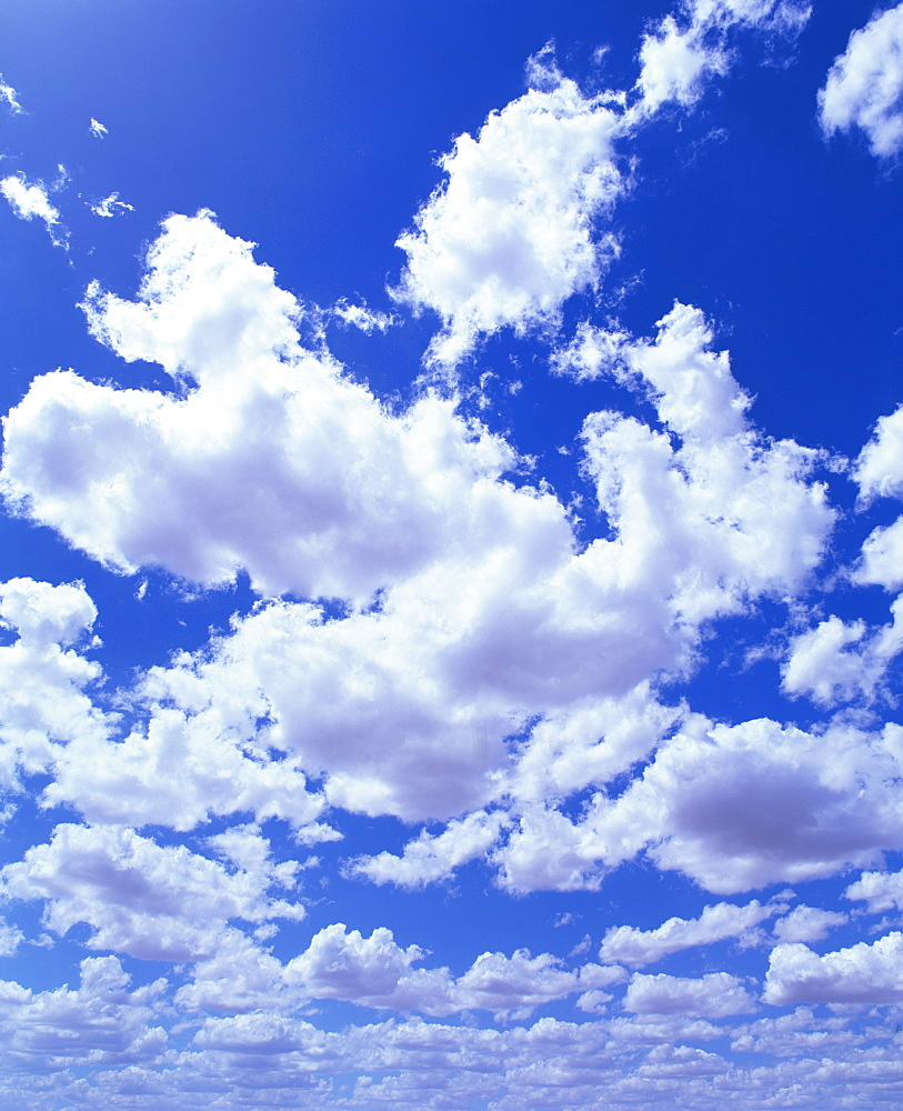Puffy white cumulus clouds in blue skies over Regans Ford, Western Australia, Pacific - 383-1245