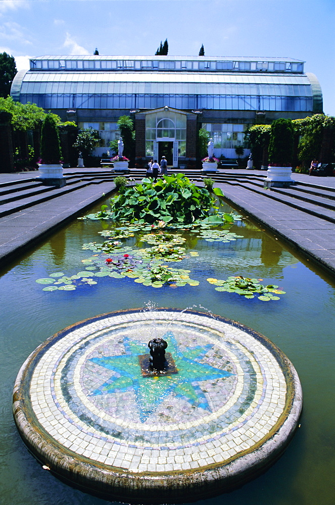 Lily pond and fountain, Winter Gardens, Domain Park, Auckland, North Island, New Zealand, Pacific