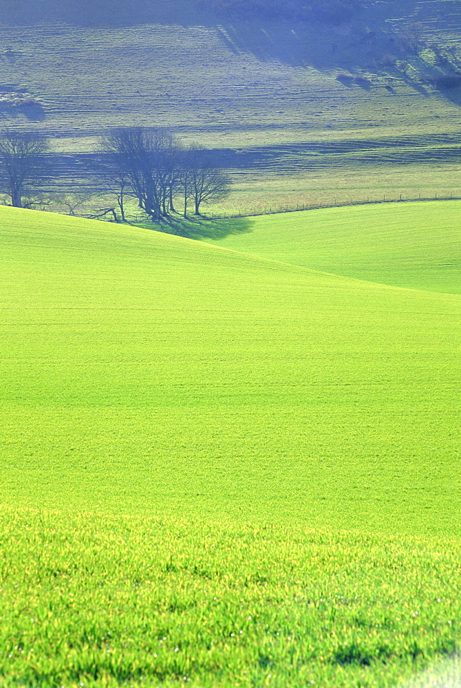 The South Downs near Wilmington, East Sussex, England, UK, Europe