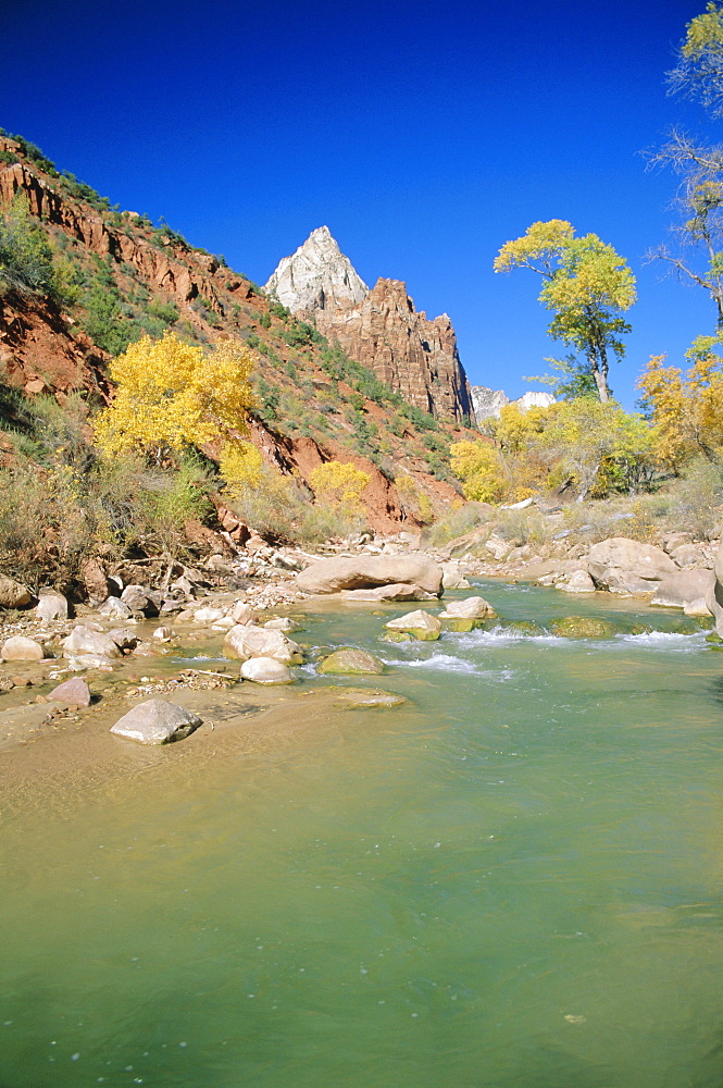 Mount Moroni and the Virgin River in autumn, Zion National Park, Utah, USA