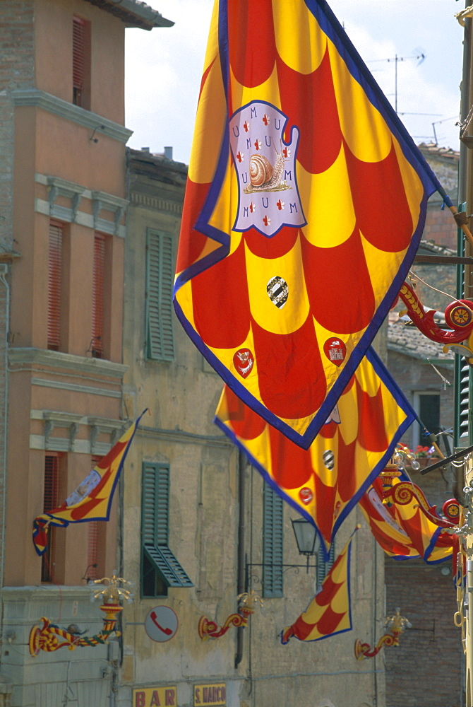 Flags and lamps of the Chiocciola (snail) contrada in the Via San Marco during the Palio, Siena, Tuscany, Italy, Europe