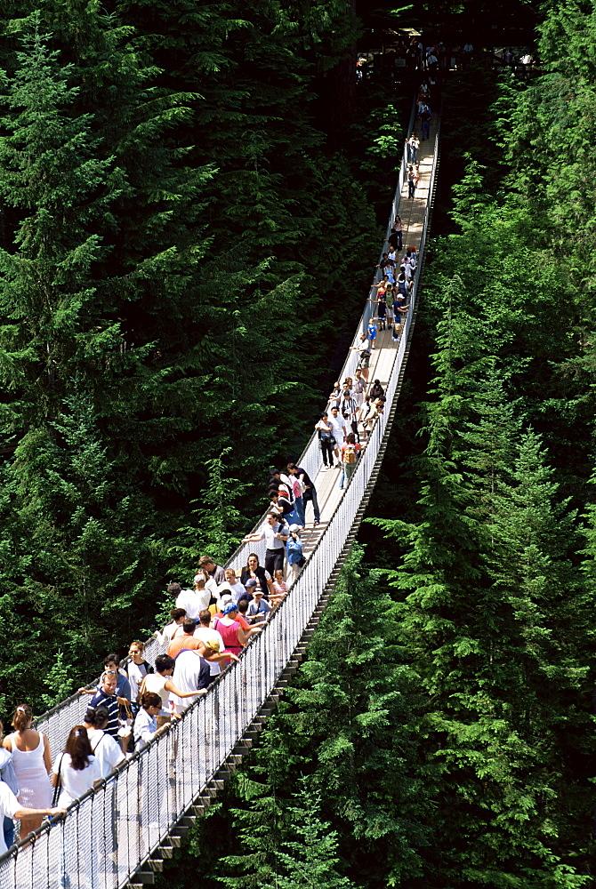The Capilano Suspension Bridge, Vancouver, British Columbia (B.C.), Canada, North America
