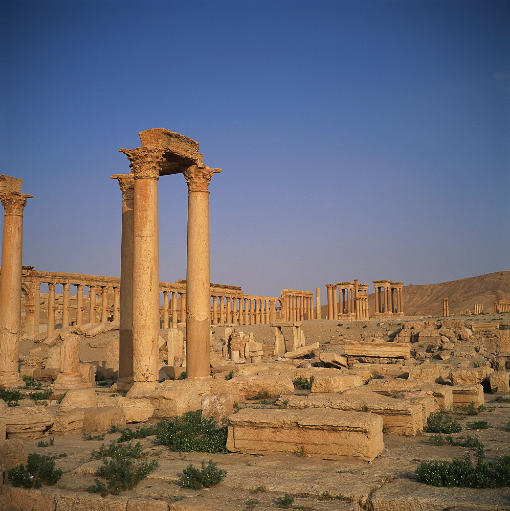 The Roman Baths of Diocletian dating from the 3rd century AD, and the columned main street dating from the 1st century AD, at the ancient Graeco-Roman city of Palmyra, UNESCO World Heritage Site, Syria, Middle East
