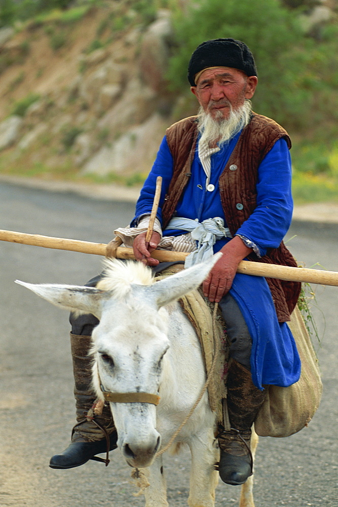 Portrait of an old Uzbek farmer on a donkey, Shakhrisabz near Samarkand, Uzbekistan, Central Asia, Asia