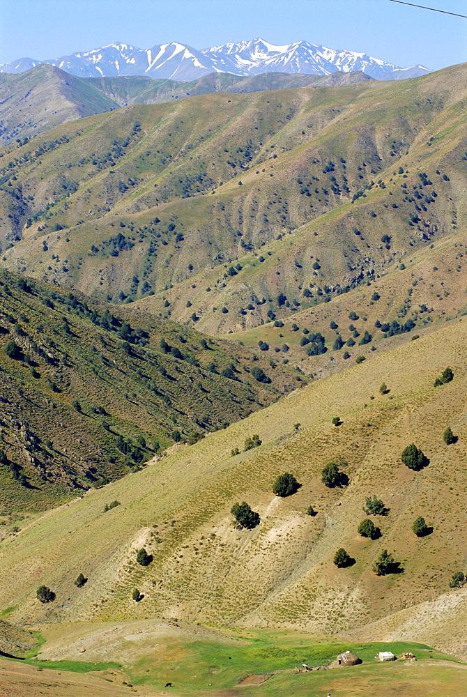 Yurt in Chatkal Range near Tashkent, Uzbekistan, Central Asia