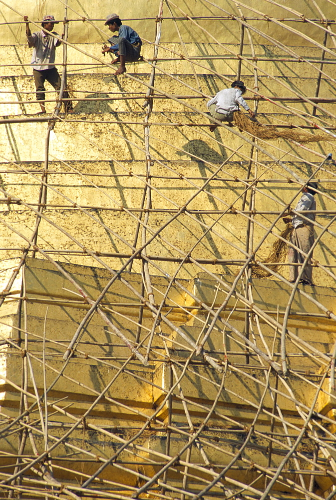 Workers on bamboo scaffolding applying fresh gold leaf to the Shwedagon Pagoda, Yangon (Rangoon), Myanmar (Burma), Asia - 450-2348