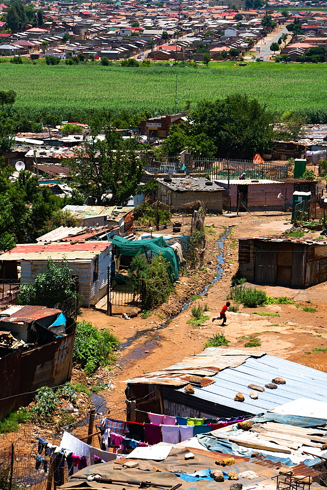 Only ten percent is now shanty town, the rest lower middle class brick housing, Soweto, Johannesburg, South Africa, Africa - 450-4243
