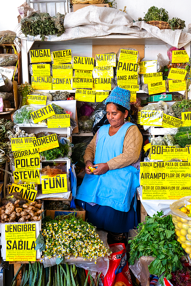 Stallholder surrounded by her herbal products in the main market, Sucre, UNESCO World Heritage Site, Bolivia
