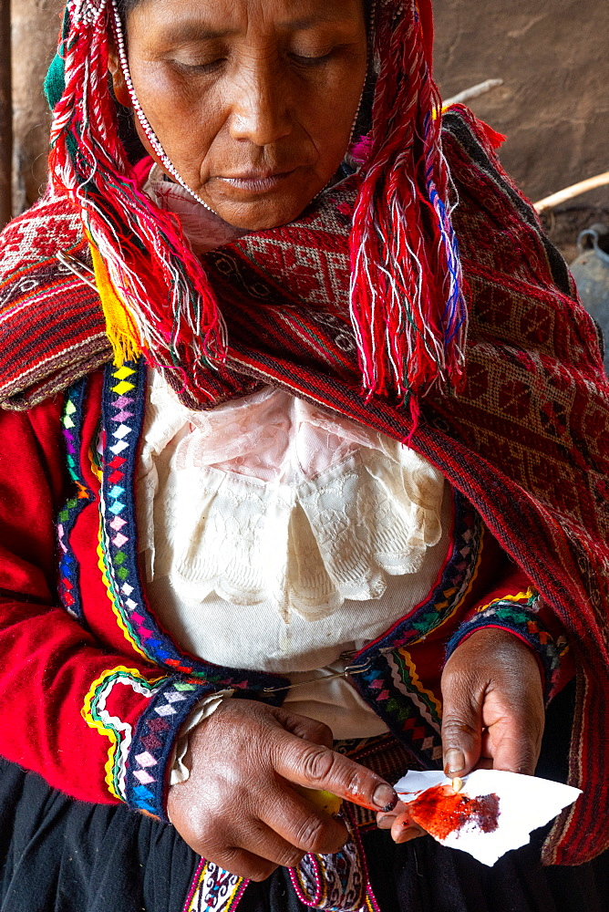 Local female weaver mixing cochineal dye from insects, the definitive red used, Chumbe Community, Lamay, Sacred Valley, Peru, South America