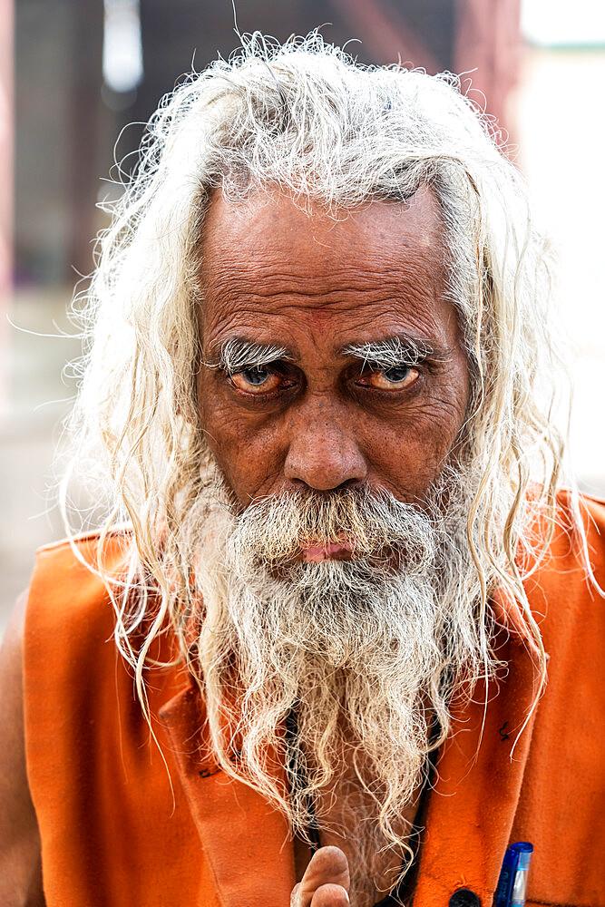 Head shot portrait of wild looking senior sadhu (holy man) with long grey hair and a beard, Bateshwar, Uttar Pradesh, India