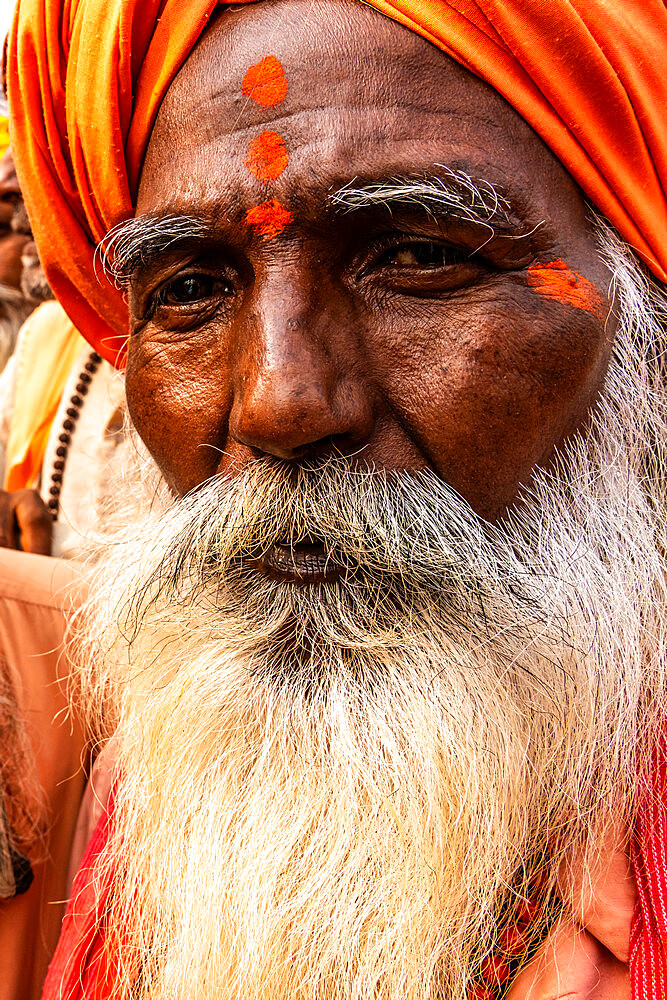 Head shot portrait of wise looking senior sadhu (holy man) dressed in orange with a bushy white beard.