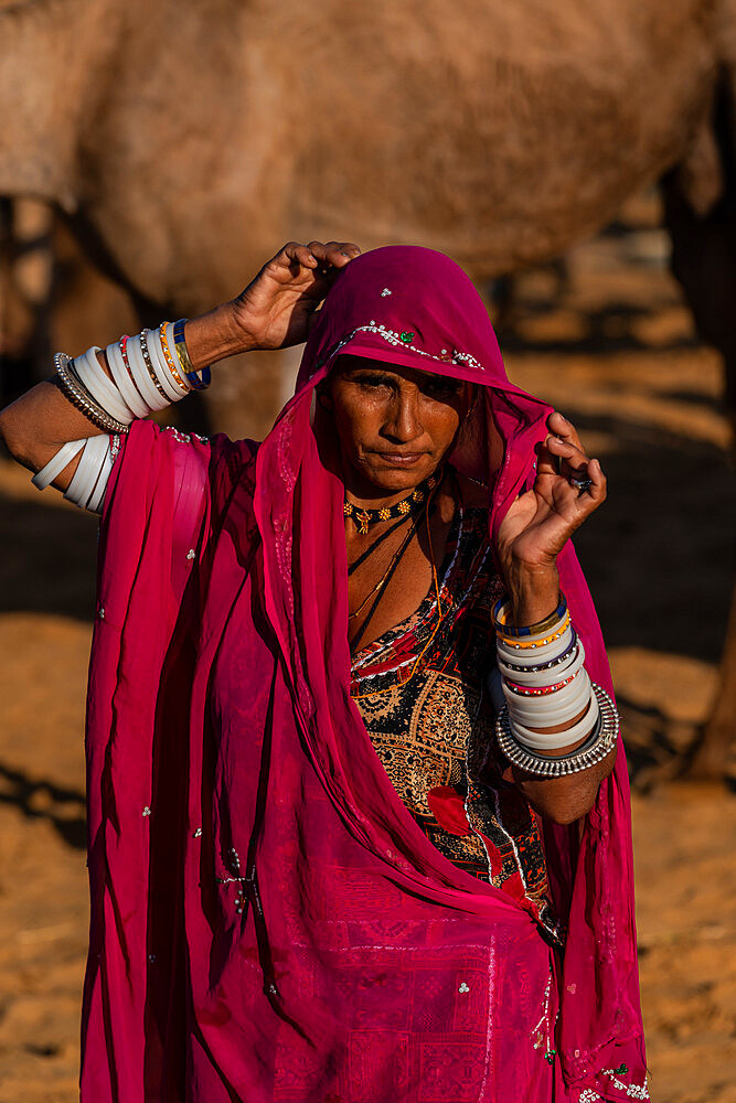 Rajasthani woman, wife of a camel trader, in traditional clothing, lifting her veil, camels behind, Pushkar Camel Fair.
