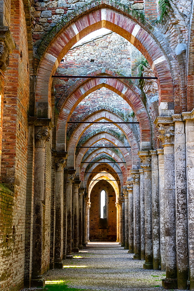 Colonnade in roofless 13th century Gothic Cistercian Abbey of San Galzano, Chiusdino, Tuscany, Italy, Europe