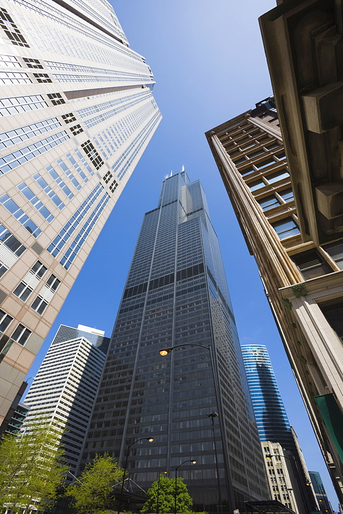 Sears Tower, Chicago, Illinois, United States of America, North America - 462-2268