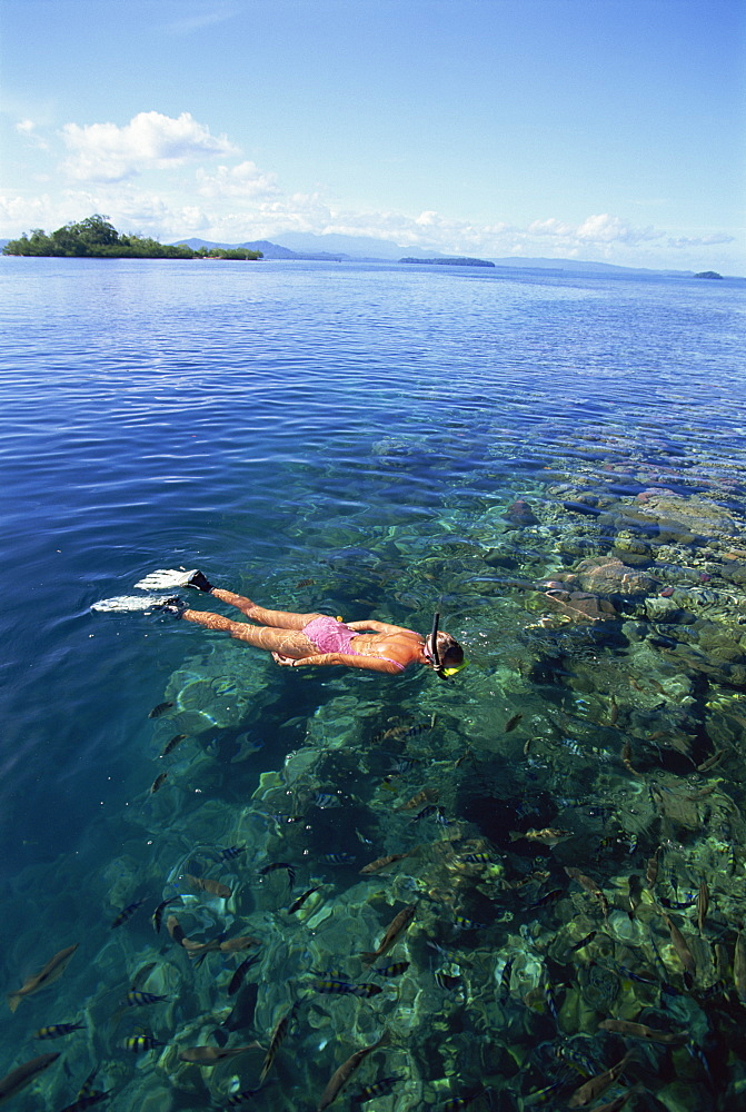 Tourist snorkelling in Marovo Lagoon, Solomon Islands, Pacific Islands, Pacific
