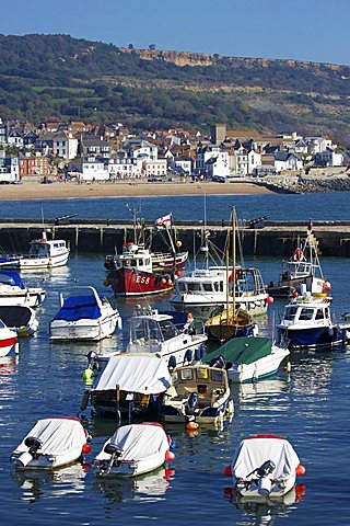 Harbour and Town, Lyme Regis, Dorset, England, United Kingdom, Europe